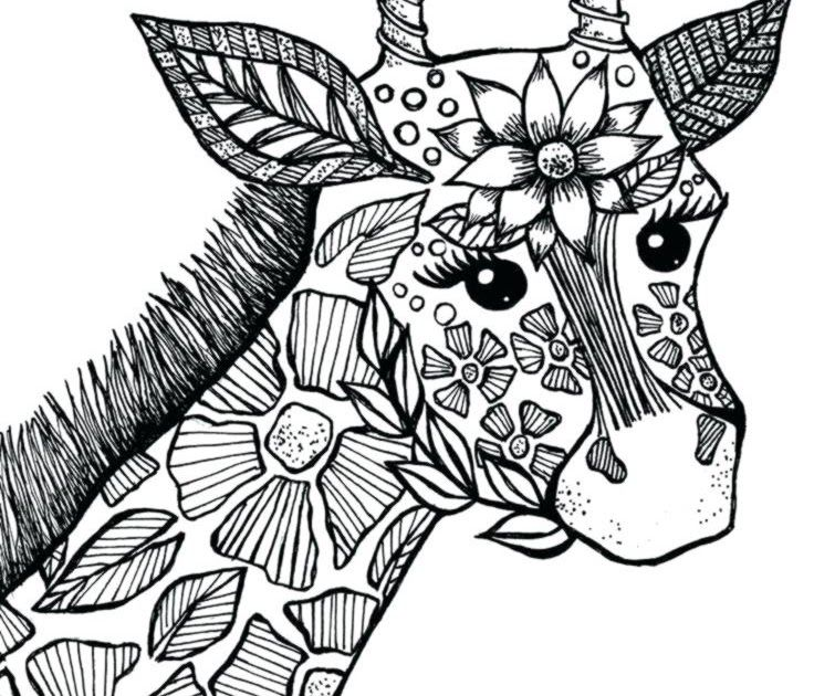 Why Wouldnt It Be So Popular With Adults Beautiful Free Printables Of Owls Butterflies Turtle Animal Coloring Pages Coloring Pages Nature Horse Coloring Pages