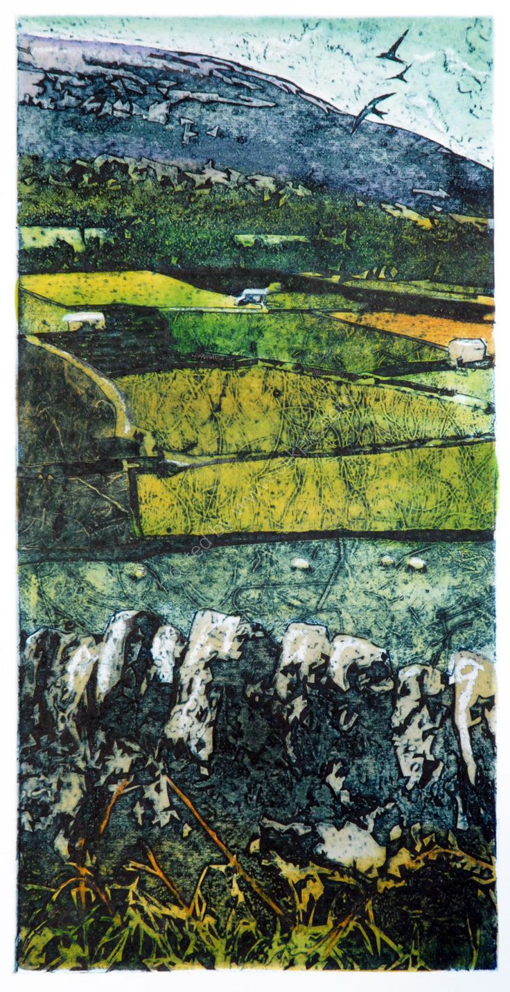 Barns and walls, upper Swaledale