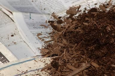 Is Newspaper Safe as Garden Mulch?: Newspapers can be used to smother an unwanted lawn. Weigh down your layers with garden mulch.