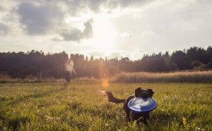 Dogfrisbee - a high-velocity. Click here for the full article: www.hudoba.de