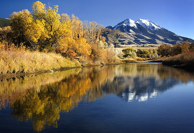 100 best images about montana on pinterest montana for Peak fishing times