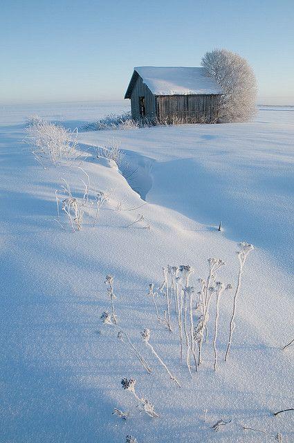 Talvi  Pohjanmaa