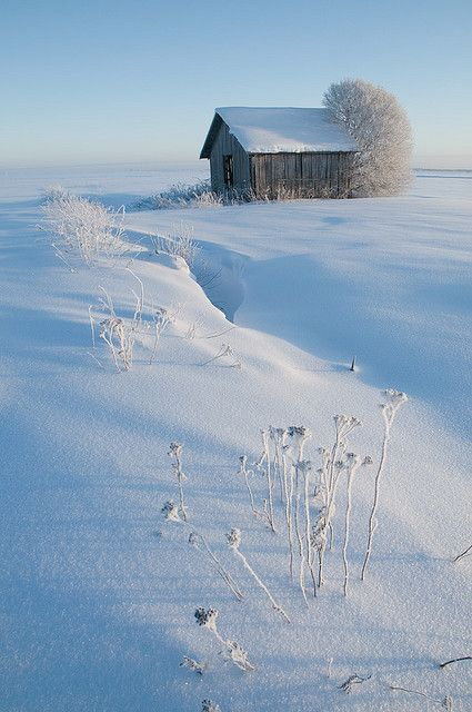 Winter Barn ♥