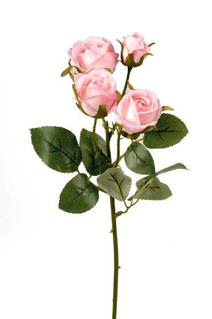 #rose #flower #pink #decoration for #home #homeliving by #ZAROS www.zarossa.gr