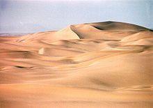 Un desierto es un bioma que recibe pocas precipitaciones. Tienen reputación de poseer poca vida, pero eso depende de la clase de desierto; e...