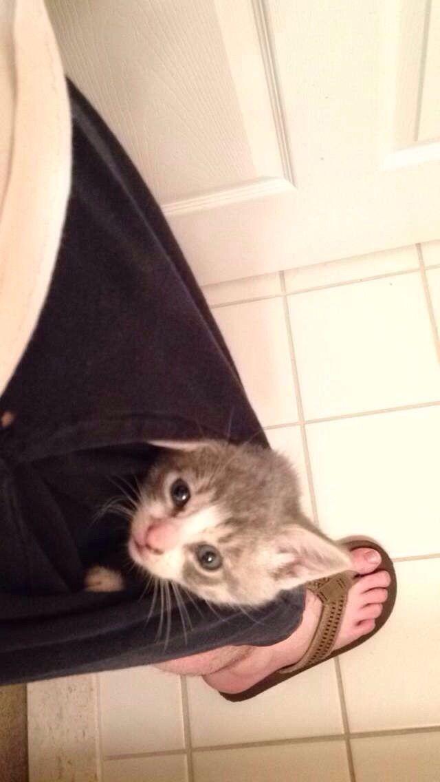 My new pocket pussy