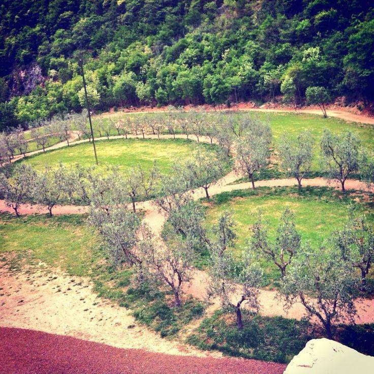 Viaggi Italia - Terzo paradiso e bosco di san Francesco, Assisi  http://www.ariles.it/bosco-di-san-francesco/