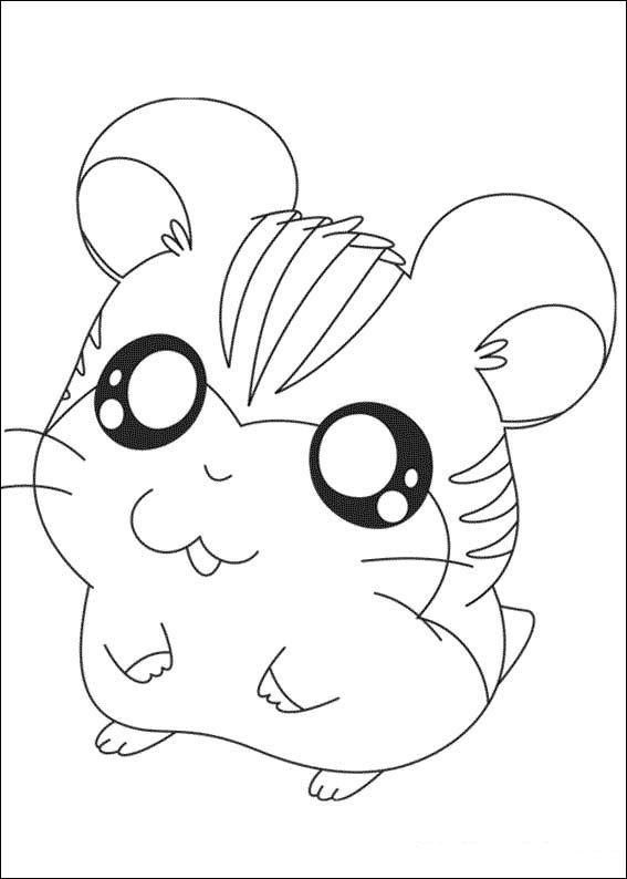 Cute Hamster Coloring Pages For Kids Animal Coloring Pages Coloring Pages For Kids Cute Coloring Pages