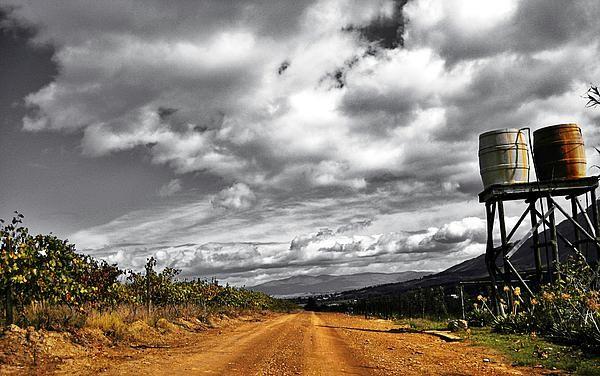 Villiersdorp Farm, South Africa