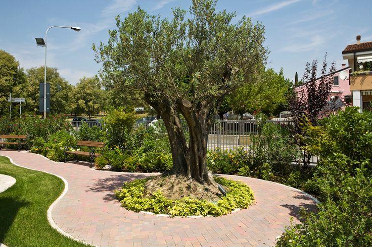 Pi di 25 fantastiche idee su piccoli giardini su for Progettazione piccoli giardini