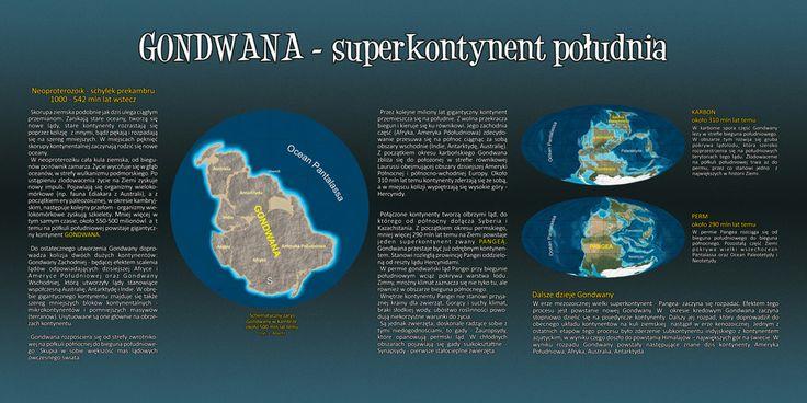 Gondwana - poznaj dzieje Superkontynentu. Przed edukacyjnym spacerem po Gondwanie warto poznać jej historię.
