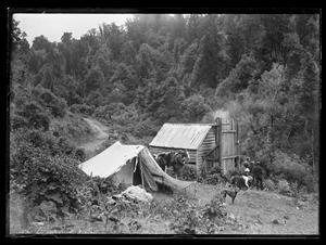 Half-way turn - Pipiriki to Raetihi Road - Collections Online - Museum of New Zealand Te Papa Tongarewa