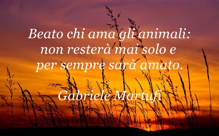Beato chi ama gli animali: non resterà mai solo e per sempre sarà amato. (Gabriele Martufi)
