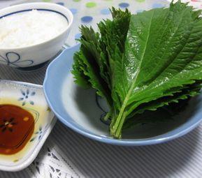 大葉を、しょうゆとごま油のタレにつけて食べる「大葉のり」。簡単なのに、ごはんのおかわりが止まらない!