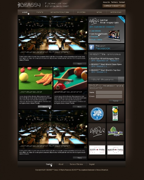 Beassy internatilan sport news website design