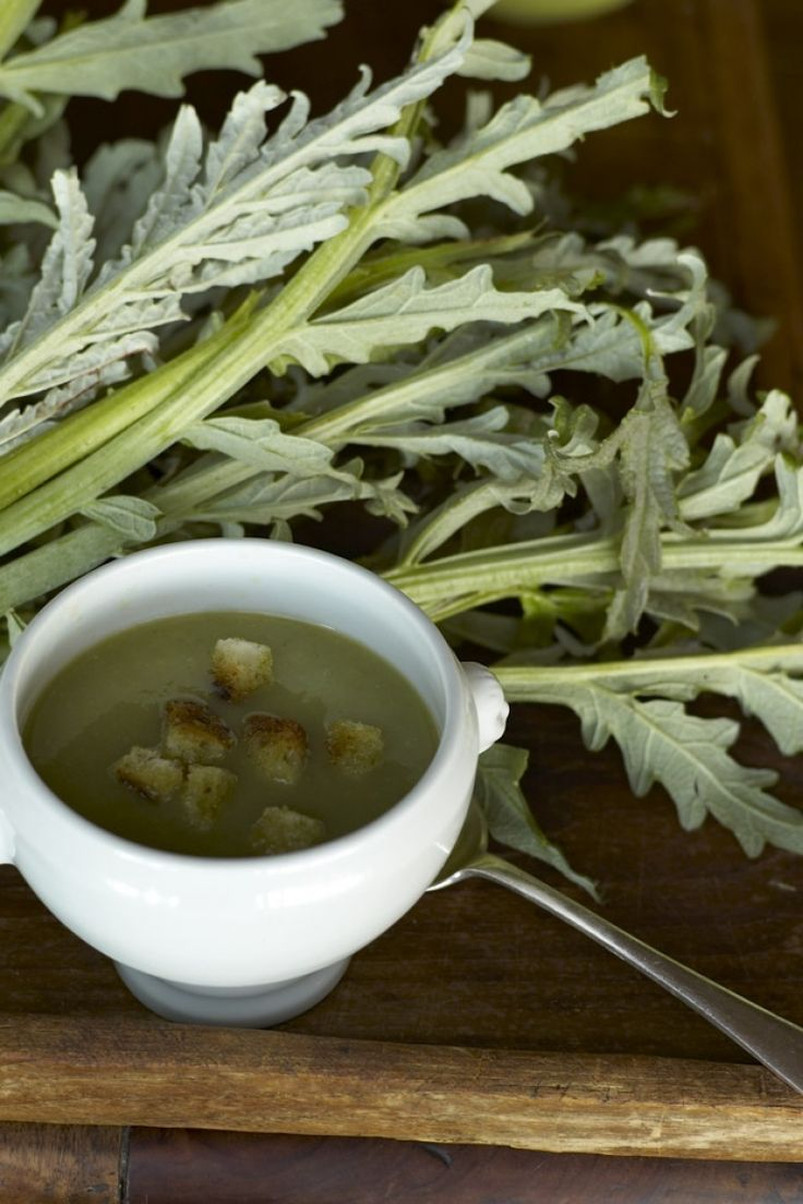Crema di cardi, ricetta invernale con ingredienti, dosi e il vino perfetto! http://winedharma.com/it/dharmag/gennaio-2015/crema-di-cardi-una-semplice-grande-ricetta-invernale