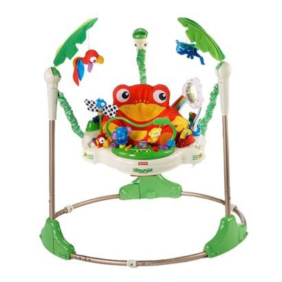 Fisher-Price Rainforest Jumperoo. I really like this jumaproo it is really cute and has tons of activities for baby.