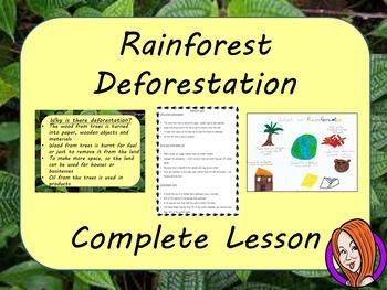 rainforest deforestation speech