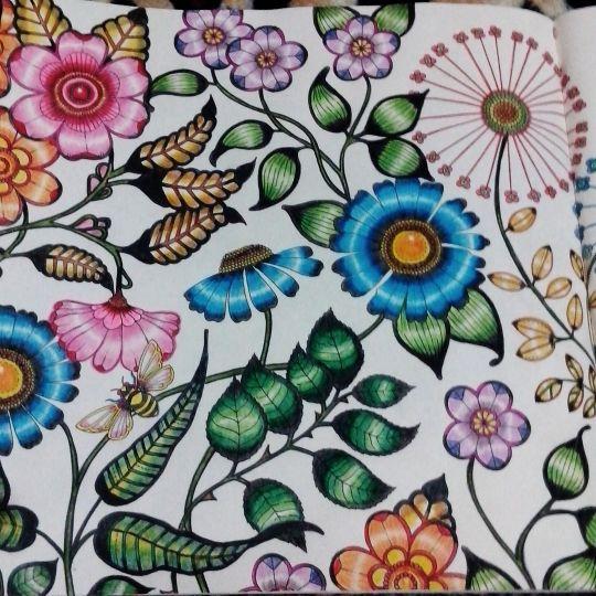 147 Best Secret Garden Johanna Basford Images On Pinterest