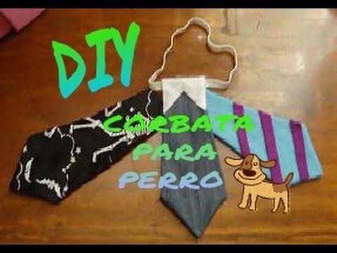 Diy, Corbata para perro
