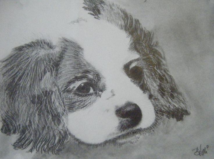 Bódi Ferenc rajza