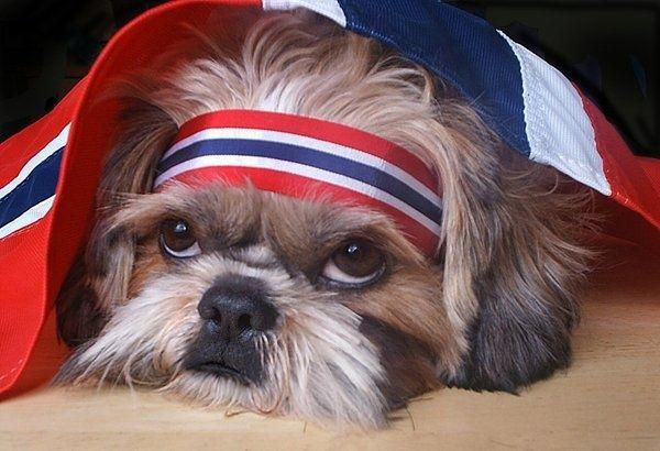 The Norwegian National Day