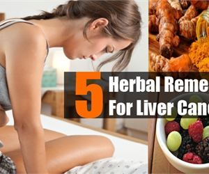 5 Herbal Remedies For Liver Cancer - Liver Cancer Treatments | Search Home Remedy