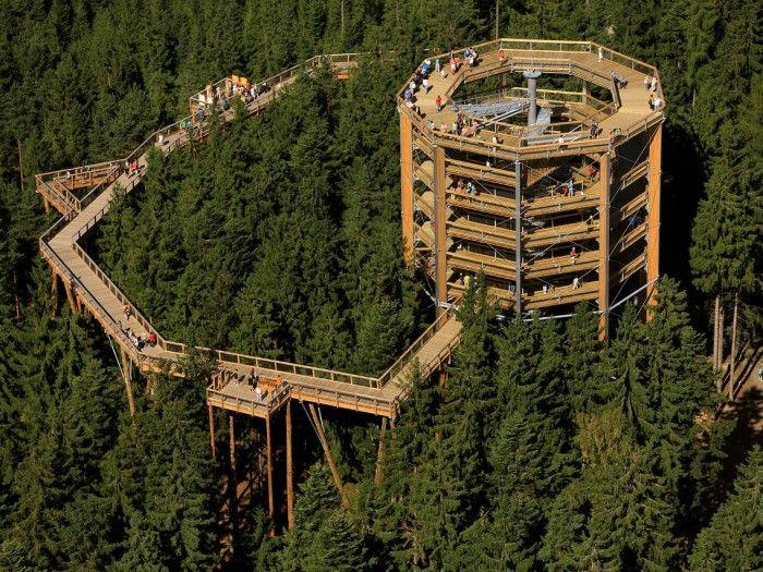 Walk up through trees. Slide down afterwards. Lipno near Cesky Krumlov