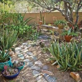 Good Garden Ideas 824 best high desert gardening ideas images on pinterest | gardens