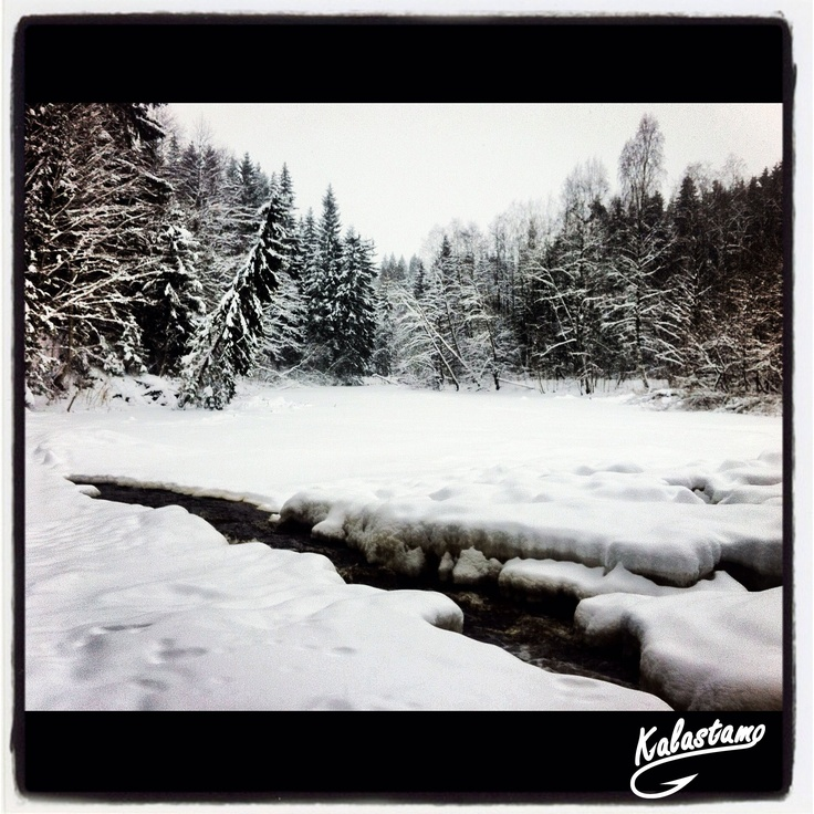 Nukarinkoski - Finland - www.kalastamo.com