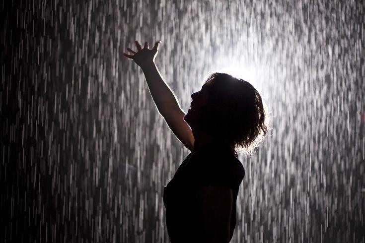 Rain Room | Los Angeles County Museum of Art (LACMA) | Art in Los Angeles