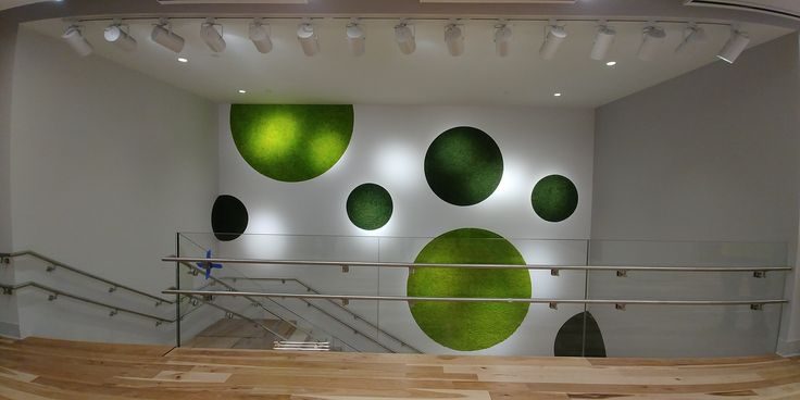 Custom moss wall installation in the lobby of the new Avenues School, NYC.