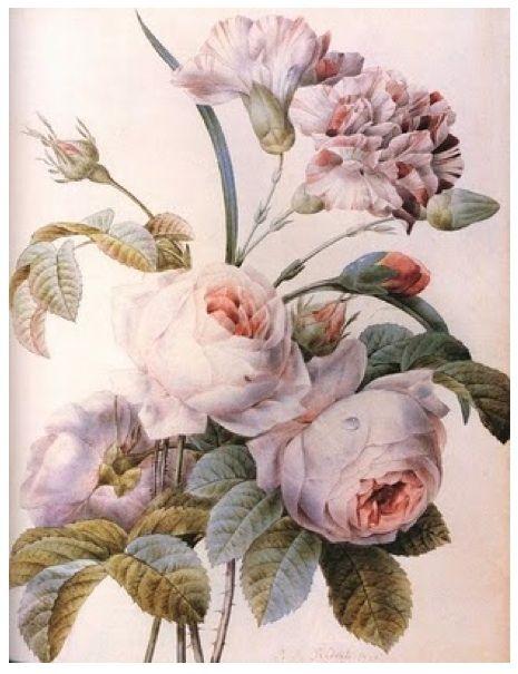 pastel printVintage Flower, Flower Pictures, Botanical Prints, Vintage Prints, Vintage Pink, Flower Shops, Art Flower, Pink Rose, Vintage Style