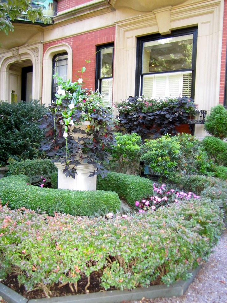 17 best images about courtyard gardens on pinterest for Courtyard landscaping sydney