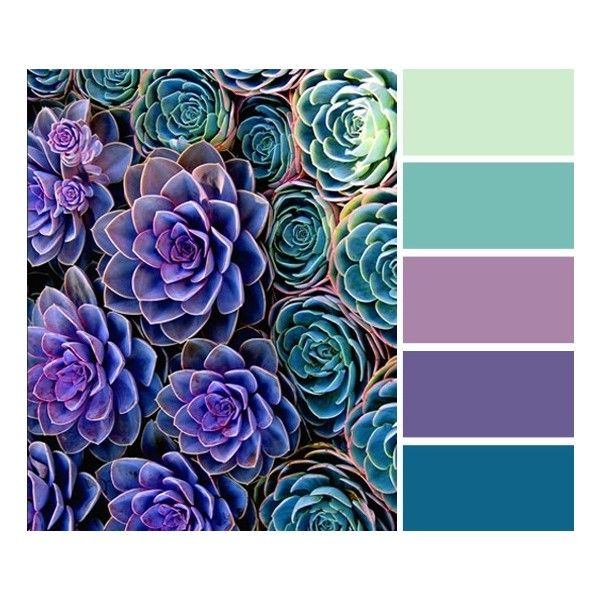 94 Best Colors Purple Aqua Teal Turquoise Robin S Egg: 1000+ Ideas About Color Palette Green On Pinterest