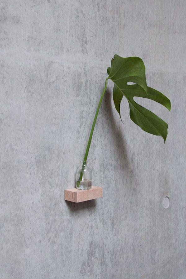 78 besten planter Bilder auf Pinterest | Te quiero, Zimmerpflanzen ...