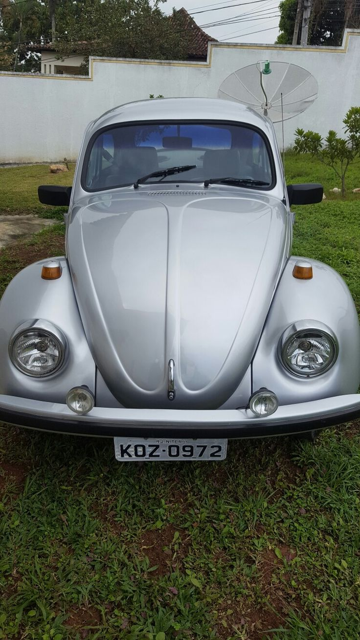61 best Carros images on Pinterest | Vw beetles, Vw bugs and ...