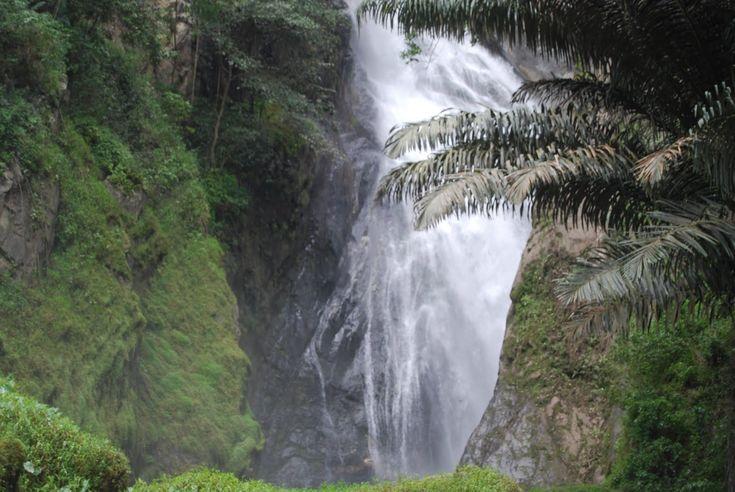 Taman Wisata Wera Hutan Hujan Tropis yang Menawan di Sulawesi Tengah - Sulawesi Tengah