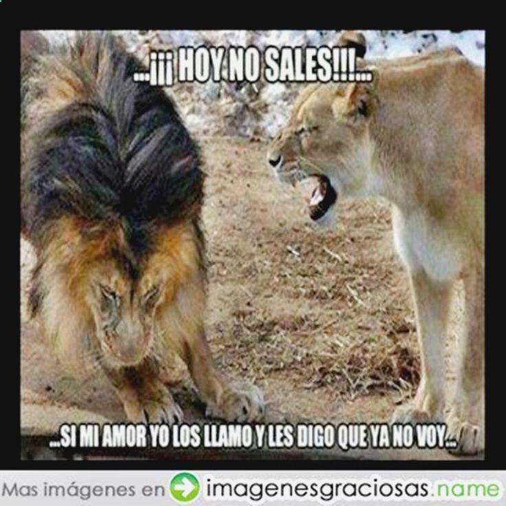 Disfruta y ríe con chistes re malos, imagenes graciosas para felicitar, memes divertidos chile mexico, chiste wenceslao y gifs dancing ➛➛ http://www.diverint.com/imagenes-graciosas-acaba-operado/