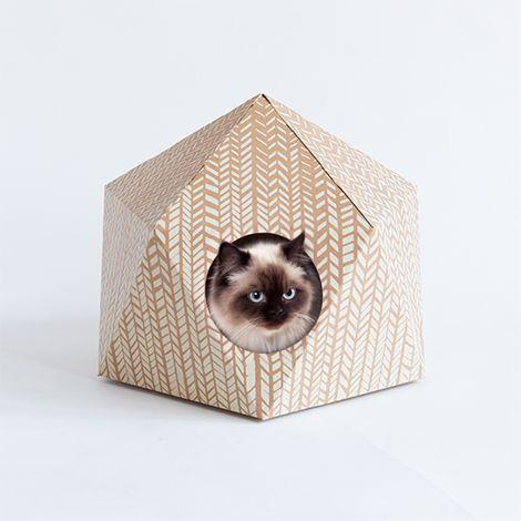 Drie originele kattenhuisjes waar onze katten dol op zijn / www.woonblog.be