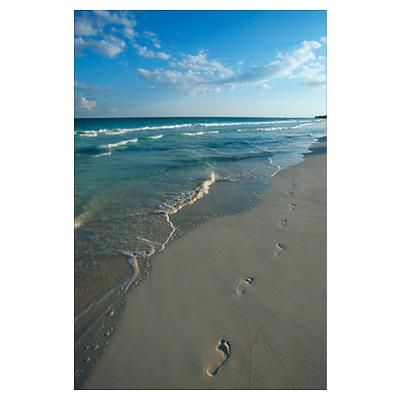 Mexico, Yucatan Peninsula, Carribean Beach, footpr Poster