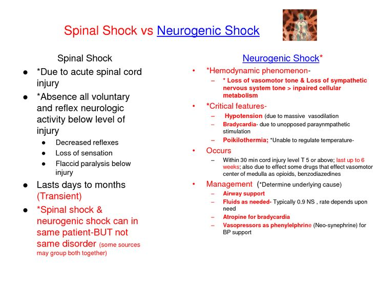 neurogenic Shock | Spinal Shock vs Neurogenic Shock ...