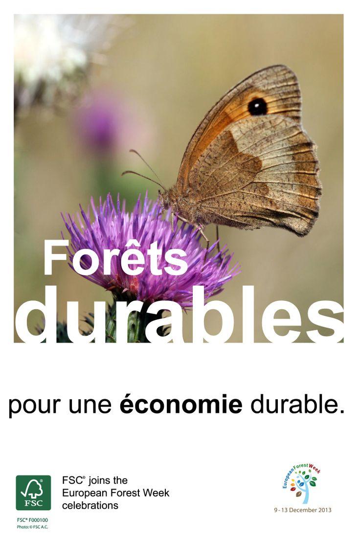 Forêts durables – pour une économie durable.