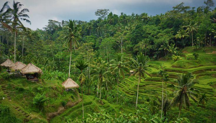 Next Stop: Sri Lanka | KEEP IT HERRLICH