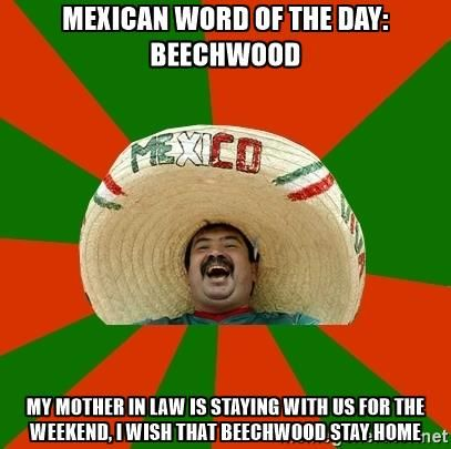mexican word of the day: beechwood my mother in law is staying with us for the weekend, i wish that beechwood stay home - Successful Mexican
