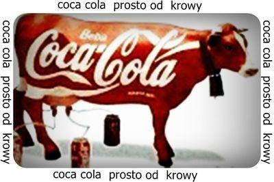 coca cola prosto od krowy