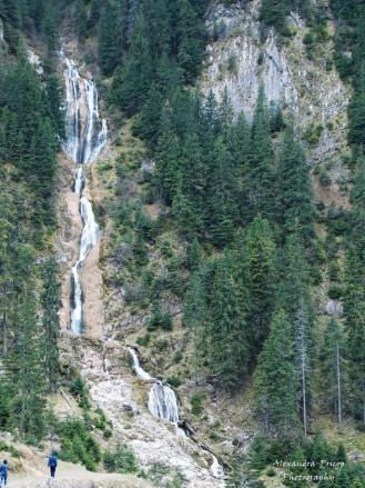 Horses waterfall cascada Cailor Borsa Maramures Romania beautiful european natural scenery