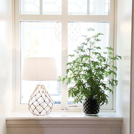 Netted glass globe - Mallory table lamp - . Suits perfectly by plants   #sessak #byrydens #mallory #interiorlighting #interior #design #interior #interiorinspo #interiorinspiration #interior123 #sisustusinspiraatio #sisustus #lighting #interiorstyling