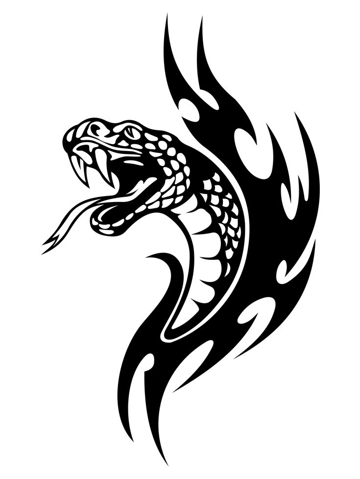 Tribal Serpent Tattoos | Tribal Snake Tattoo