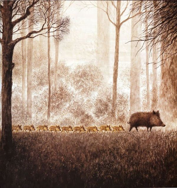 wonderful pig image by Annegert Fuchshuber,  from Zwei & Mehr, a German children's book